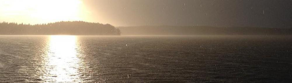 cropped-regn.jpg