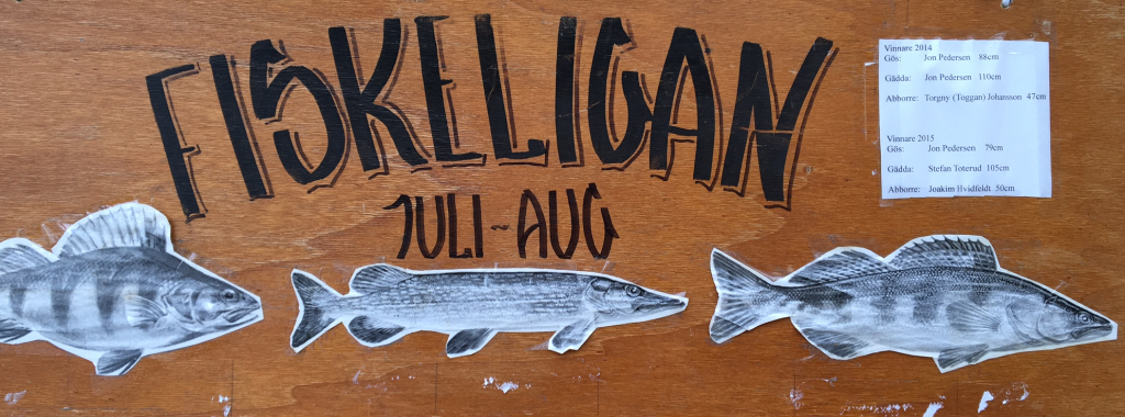 Fiskeligan 2016 2